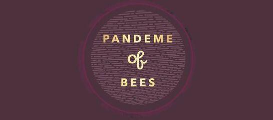 Pandeme of Bees - Book Launch | Desert Festival 2020
