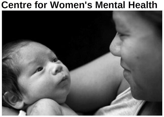 Registration of Interest for Parent-Infant Psychotherapy RWH: ADVANCED SEMINAR - Date to be confirmed for 2020