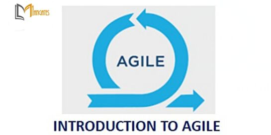 Introduction To Agile 1 Day Training in Canberra