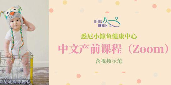 【Zoom】中文产前课程(含视频示范)