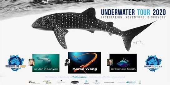Underwater Tour 2021 - Aaron Wong, Richard Smith, Janet Lanyon