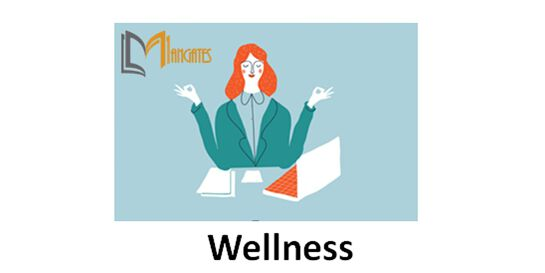 Wellness 1 Day Training in Melbourne